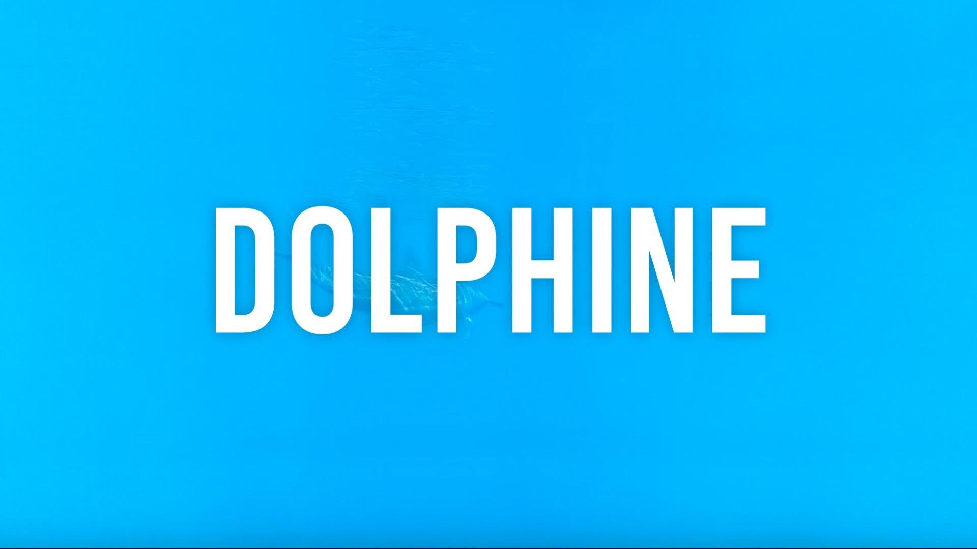 【予告】DOLPHINE